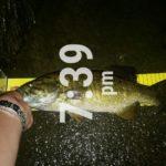 【4話】6月27日 低活性の荒川スモールマウスバス