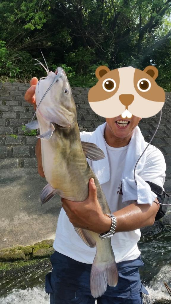 【7話】7月2日は荒川水系の堰での釣行。