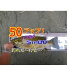 【131話】50アップ川スモール/ディープドリフト/YouTube動画
