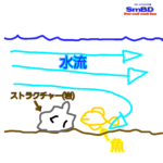 【127話】川バス釣り最強攻略方法/川スモールマウスバス