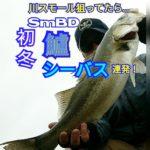 【140話】初冬のシーバス連発!【YouTube動画】
