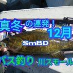 【141話】真冬の12月川スモール/バス釣り【YouTube動画】